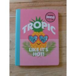 Cuadernos empastados frutas...